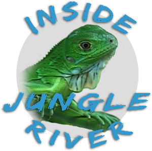 Inside Jungle River Project